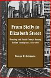 From Sicily to Elizabeth Street : Housing and Social Change among Italian Immigrants, 1880-1930, Gabaccia, Donna R., 0873957695