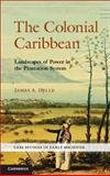The Colonial Caribbean : Landscapes of Power in Jamaica's Plantation System, Delle, 0521767709