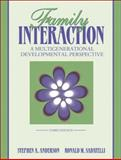 Family Interaction : A Multigenerational Developmental Perspective, Anderson, Stephen A. and Sabatelli, Ronald Michael, 020534772X