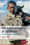 The Anthropology of Childhood : Cherubs, Chattel, Changelings, Lancy, David F., 0521887739