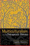 Multiculturalism and the Therapeutic Process, Mishne, Judith Marks, 1572307757