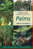 Timber Press Pocket Guide to Palms, Robert Lee Riffle, 0881927767