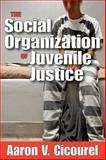 The Social Organization of Juvenile Justice, Cicourel, Aaron V. and Cicourel, Aaron, 1560007796