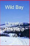 Wild Bay, Llewelyn Pritchard, 1480027820