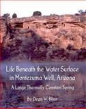 Life Beneath the Water Surface in Montezuma Well, Arizona, Dean W. Blinn, 098596782X