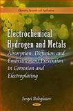 Electrochemical Hydrogen and Metals Absorption : Behaviour, Fatigue Durability and Delayed Fracture, Beloglazov, Sergei, 1616687835