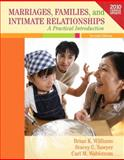 Marriages, Families, and Intimate Relationships Census Update, Williams, Brian K. and Sawyer, Stacey C., 020515784X