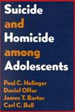 Suicide and Homicide among Adolescents, Holinger, Paul C. and Offer, Daniel, 0898627885