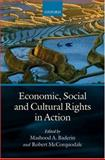 Economic, Social, and Cultural Rights in Action, Robert McCorquodale, 0199217904