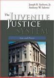 The Juvenile Justice System, Sanborn, Joseph and Salerno, Anthony, 1891487957