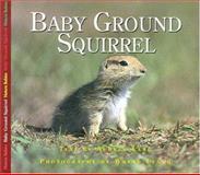 Baby Ground Squirrel, Aubrey Lang, 1550417975