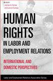 Human Rights in Labor and Employment Relations, , 0913447986