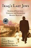 Iraq's Last Jews 9780230618008