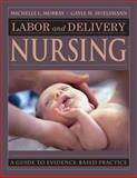 Labor and Delivery Nursing : A Guide to Evidence-Based Practice, Murray, Michelle and Huelsmann, Gayle, 0826118038