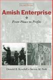 Amish Enterprise 9780801878046