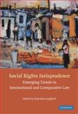Social Rights Jurisprudence : Emerging Trends in International and Comparative Law, , 0521678056