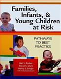 Families, Infants, and Young Children at Risk : Pathways to Best Practice, Ensher, Gail L. and Clark, David A., 155766806X