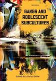 Gangs and Adolescent Subcultures, , 1609278089