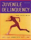 Juvenile Delinquency : Theory, Practice, and Law, Siegel, Larry J. and Welsh, Brandon C., 053457808X