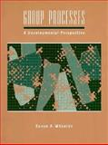 Group Processes : A Developmental Perspective, Wheelan, Susan A., 0205148093