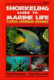 Snorkeling Guide to Marine Life : Florida, Caribbean, Bahamas, Humann, Paul and Deloach, Ned, 1878348108