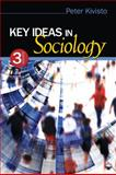 Key Ideas in Sociology 3rd Edition
