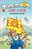 Little Critter: Just a Kite, Mercer Mayer, 0061478148