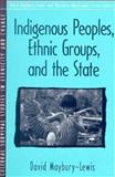 Indigenous People, Ethnic Groups, and the State, Maybury-Lewis, David, 0205198163