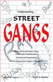 Understanding Street Gangs 9780942728170