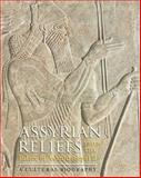 Assyrian Reliefs from the Palace of Ashurnasirpal II : A Cultural Biography, , 1584658177