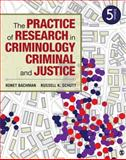 The Practice of Research in Criminology and Criminal Justice 5th Edition