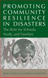 Promoting Community Resilience in Disasters : The Role for Schools, Youth, and Families, Ronan, Kevin R. and Johnston, David M., 0387238204