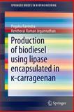 Production of Biodiesel Using Lipase Encapsulated In κ-Carrageenan, Ravindra, Pogaku and Jegannathan, Kenthorai Raman, 3319108212