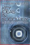 Key Ideas in Sociology 9780761988250