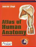 Atlas of Human Anatomy, Singh, Inderbir, 1904798284
