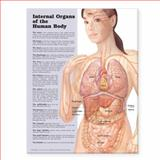 Internal Organs of the Human Body Anatomical Chart, Anatomical Chart Company Staff, 1587798298