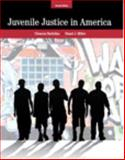 Juvenile Justice in America 7th Edition