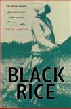 Black Rice, Judith A. Judith and Judith A. Carney, 0674008340