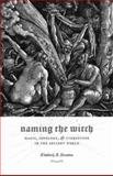 Naming the Witch : Magic, Ideology, and Stereotype in the Ancient World, Stratton, Kimberly B., 0231138369