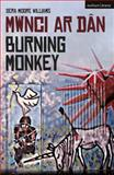 Burning Monkey : Mwnci Ar Dan, Moore Williams, Sera, 1472528395