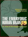 The Embryonic Human Brain : An Atlas of Developmental Stages, O'Rahilly, Ronan and Muller, Fabiola, 0471588458