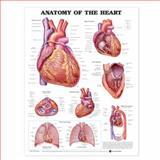 Anatomy Heart Anatomical, Anatomical Chart Company, 158779845X