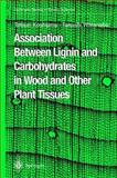 Association Between Lignin and Carbohydrates in Wood and Other Plant Tissues, Koshijima, Tetsuo and Watanabe, Takashi, 3642078532
