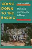 Going down to the Barrio : Homeboys and Homegirls in Change, Moore, Joan W., 087722854X