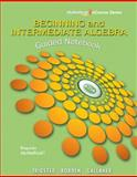 Beginning and Intermediate Algebra 1st Edition