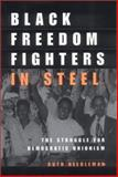 Black Freedom Fighters in Steel 1st Edition