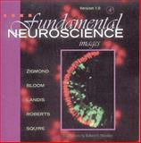 Fundamental Neuroscience, , 012780871X