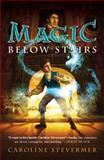 Magic below Stairs, Caroline Stevermer, 0142418714