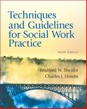 Techniques and Guidelines for Social Work Practice, Sheafor, Bradford W. and Horejsi, Charles R., 0205838758