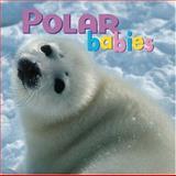 Polar Babies, Kristen McCurry, 1559718757
